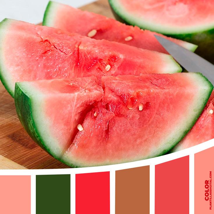 color_455