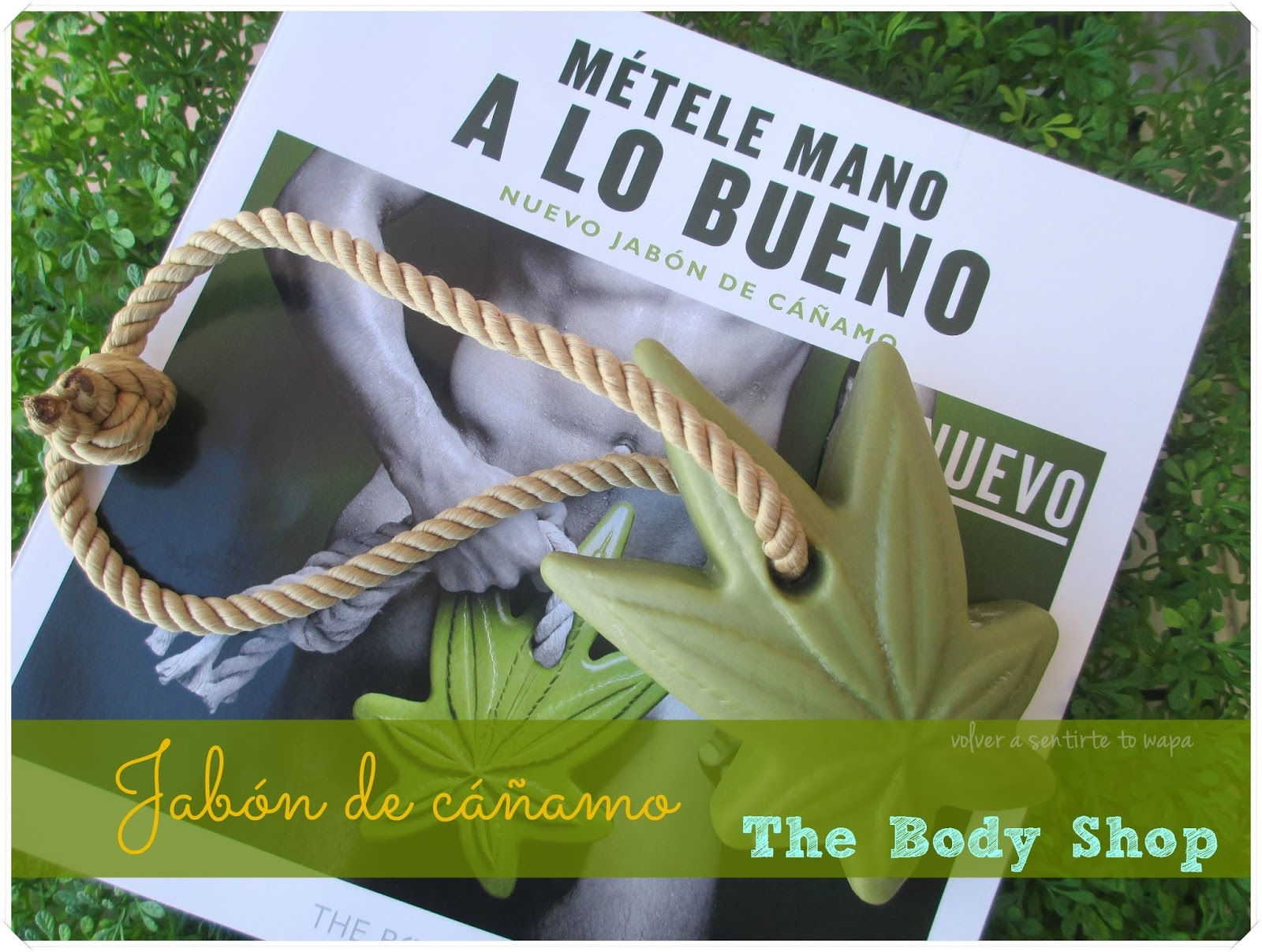 Jabón de Cáñamo de The Body Shop