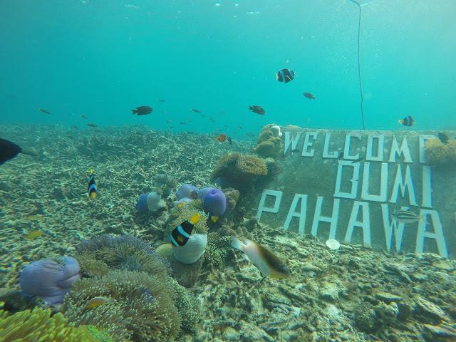 Destinasi Trip Pulau di Lampung Pahawang