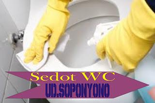Harga Sedot WC Murah Mulyorejo Surabaya 085108111287