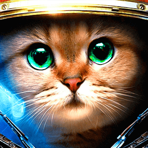 Armored Kitten apk