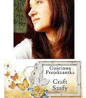 http://craft-szafa.blogspot.com/2013/02/goscinna-projektantka-i-jej-inspiracja.html