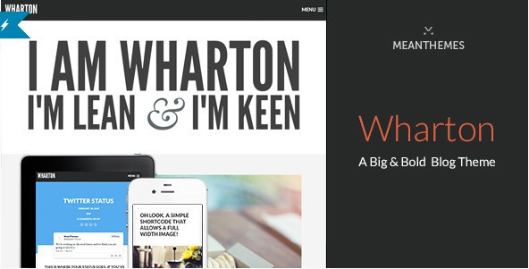 download WordPress Blog template Themeforest