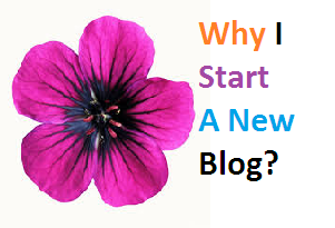 Why i start a new blog, my blogging experiences