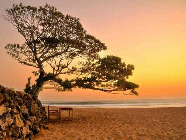 7 Most Beautifull Beaches In Yogyakarta That You Shouldn't Miss