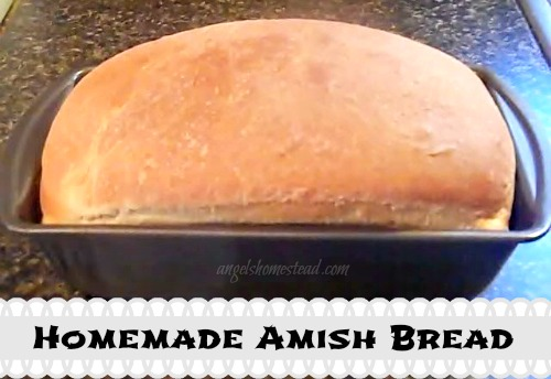 Home Sweet Homestead: Homemade Bread