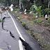 Gempa Terus Melanda, Apakah Ini Tanda Kiamat Sudah Dekat?