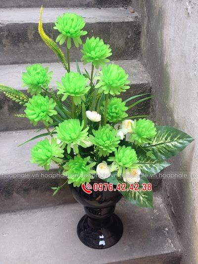 Hoa da pha le o Hang Bot