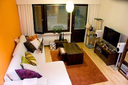 Tv as focus in small living room designs ideas