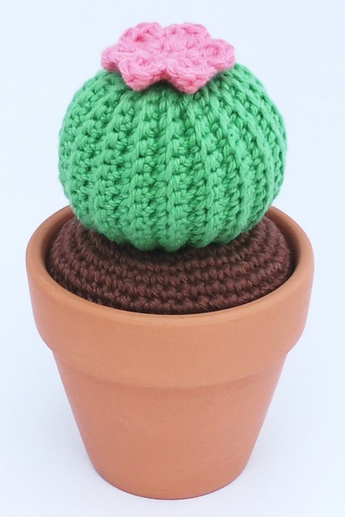 Mini Round Barrel Cactus - Free Pattern