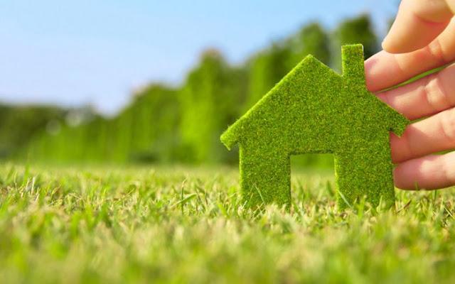 Cara Mudah dan Jimat Tanam Rumput Karpet Di Halaman Rumah