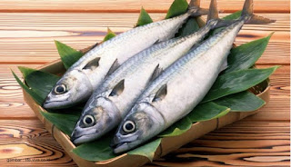 Tips Mencegah Pembusukan Ikan