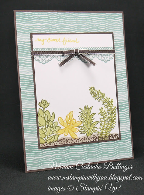 Miriam Castanho-Bollinger, #mstampinwithyou, stampin up, demonstrator, dsc, all occasions card, oh so succulent stamp set, live love grow stamp set, delicate details stamp set, moonlight dsp, su