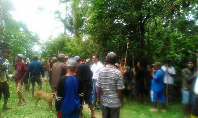 AMM Ikut Berburu Babi Bareng Masyarakat