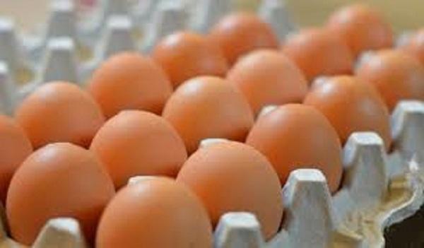 25 مليوناً و 178 ألف بيضة إنتاج دواجن السويداء