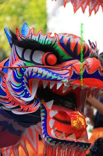Dragon dancing, Kowloon Park, Tsimshatsui, Hong Kong