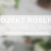 #130 Projekt rośliny | W. Muszkieta, O. Sieńko