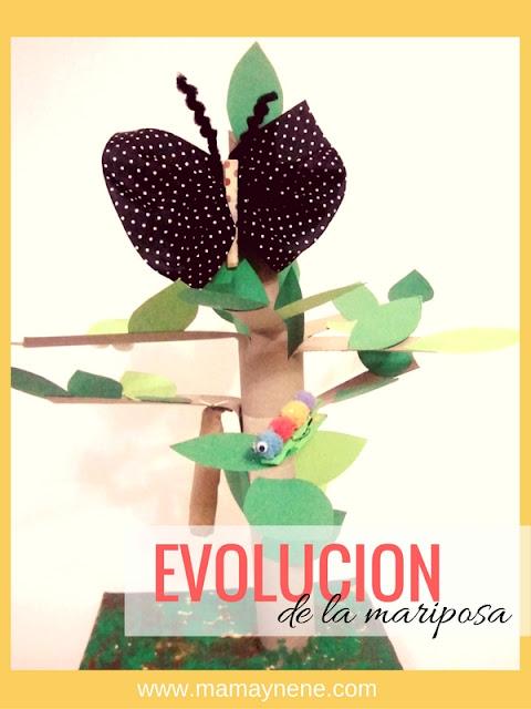 EVOLUCION-METAMORFOSIS-MARIPOSA-BUTTERFLY-MAMAYNENE-MAMIMISS-CRAFT-KIDS-MANUALIDADES