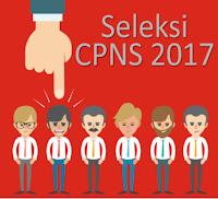 Hasil Seleksi dan Proses Pemberkasan CPNS Kemdikbud Tahun 2017