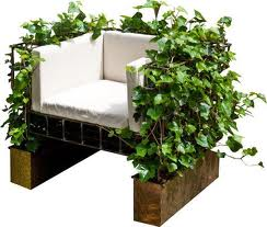 Fotoliu decorat cu plante agatatoare