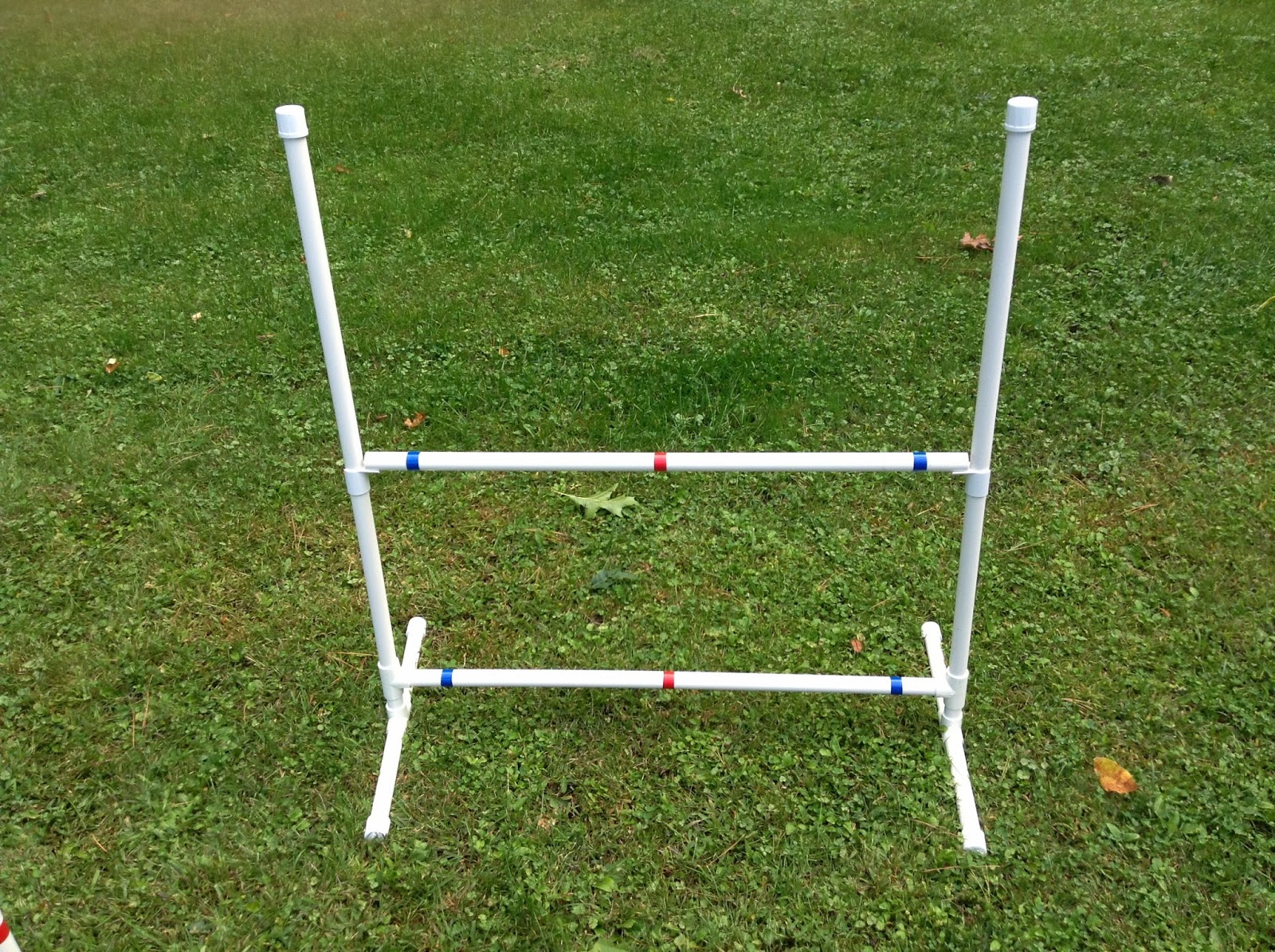 """Dog Agility Equipment-40 Jump Cups-3/4"""" FREE PLANS within ..."""