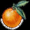 Somos parte de la economía naranja