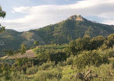Il vino italiano più antico risale all'Età del Rame