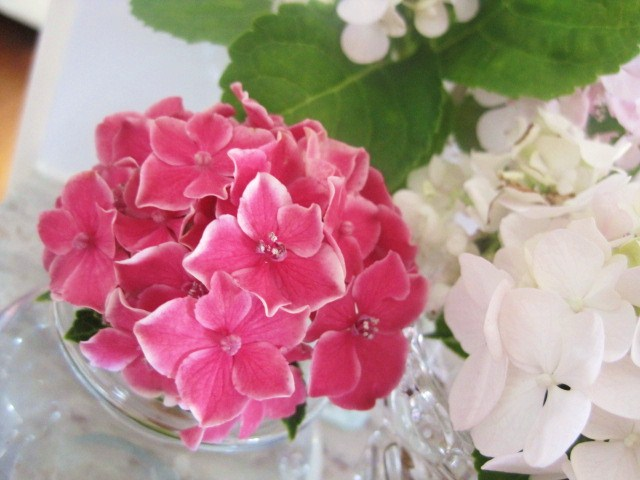Say G'Day Saturday, Christmas Tablescapes, Natasha in Oz, Christmas, pink hydrangea image