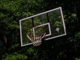 aula de basquete gratuita