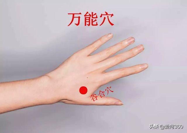 對高血壓有幫助的幾個穴位,加上化火癥狀出現,最簡單的方法就是按摩,此時按壓左手無名指第三指節可以緩解頭暈現象。如果頭暈比較嚴重,還可以按一按手心部位,常按按減輕並發可能性(降血壓) - 穴道經絡引導