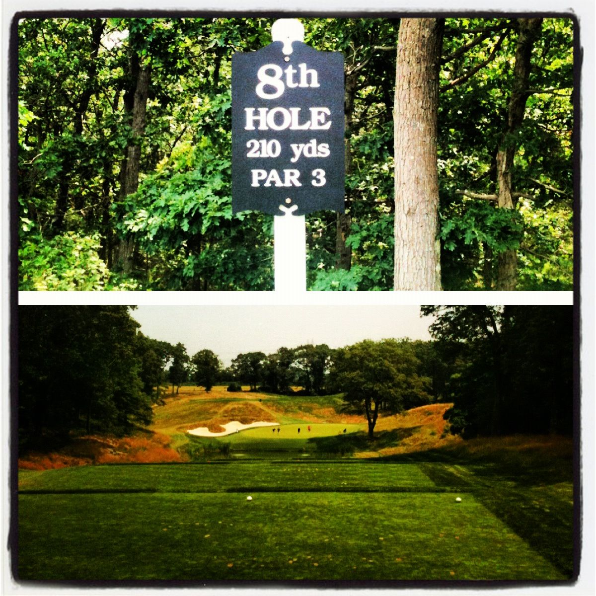 bethpage guys The world's best golfers are descending on long island when the barclays, a tournament on the pga tour, returns to the bethpage black course aug 23-28.