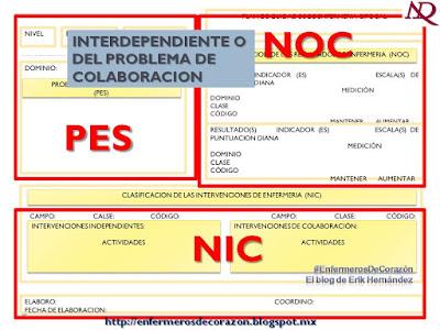 PDF DE NANDA-NIC DIAGNOSTICOS NOC ENFERMERIA