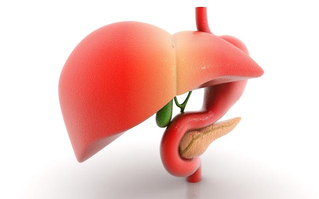 تجنب تناول تلك الأطعمة للحفاظ علي صحة الكبد