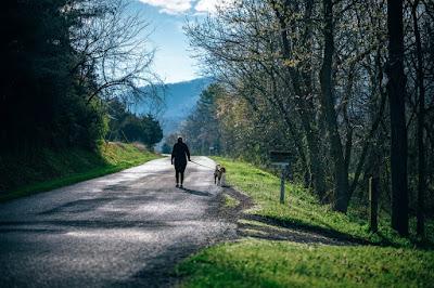 तनाव से दिलाता है छुटकारा सुबह का टहलना, जाने और भी फायदे || morning walk ke faayde