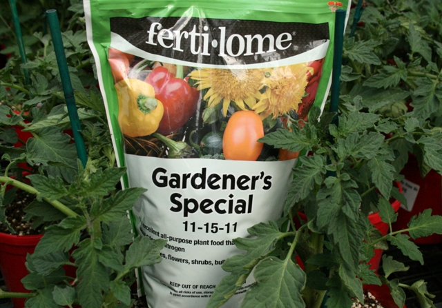 The Flower Bin: Time to feed your vegetables
