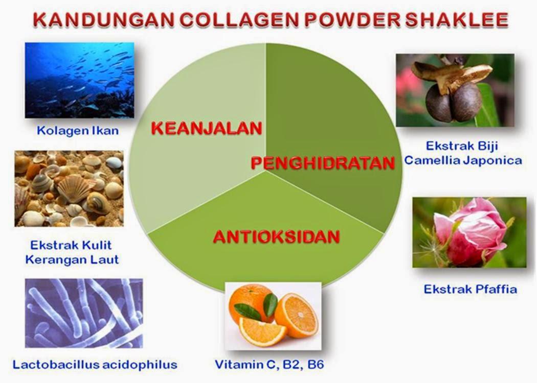 Collagen Powder Shaklee Menganjalkan Payudara