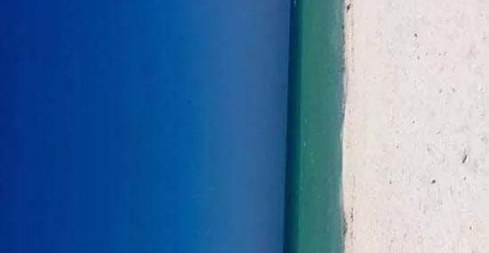 Porta ou praia - Ilusão ótica - Capa