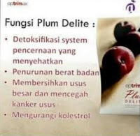 Buah Plum Delite Diet Detox Kurus Slim BPOM Optrimax Herbal Original Aman Healthy Fruit Optimax