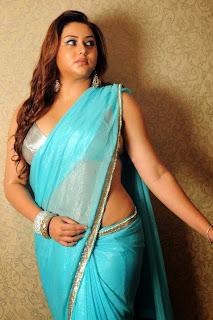 namitha-transparent-saree