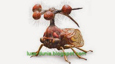 serangga mengerikan