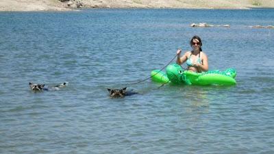 Imagen divertida mujer en el agua
