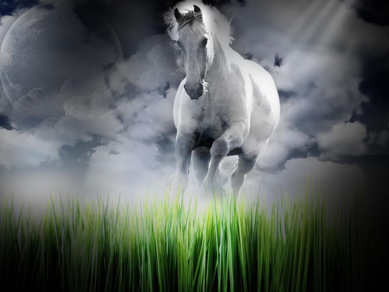 8k Animal Wallpaper Download: Animal Digital Art Wallpapers