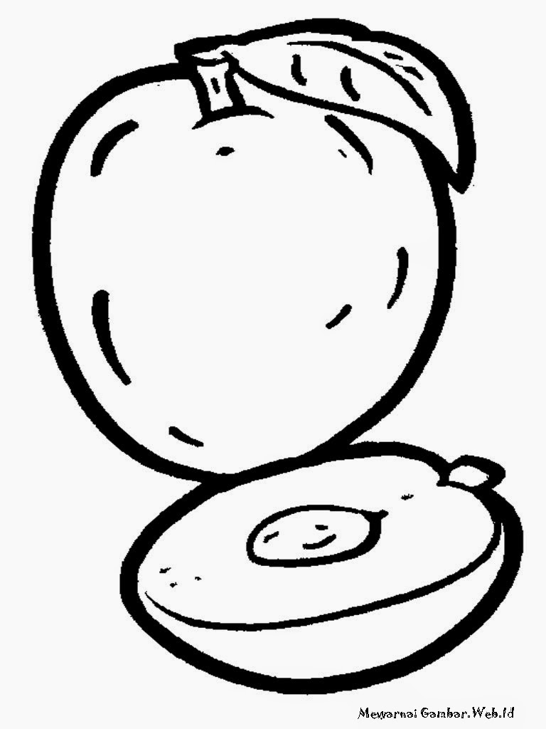 Apricot Fruit Coloring Pages