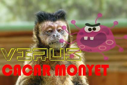 Viral Cacar Monyet dan Apa Gejala dan Penyebabnya?