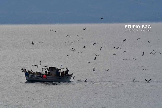 Πελοπόννησος: Ποιοι παράκτιοι αλιείς δικαιούνται κρατική ενίσχυση