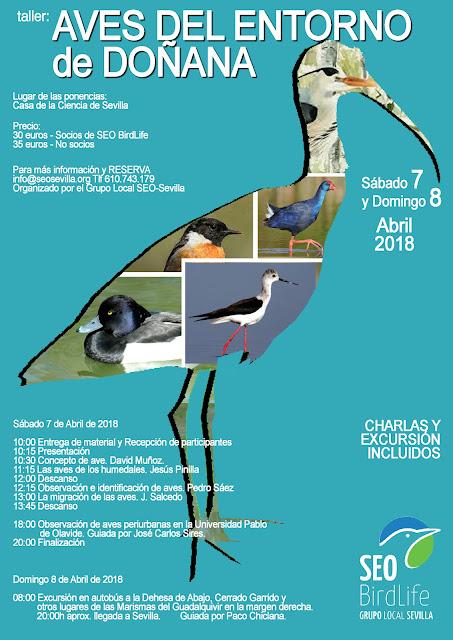 Taller: Aves del entorno de Doñana 2018. Grupo Local SEO-Sevilla.