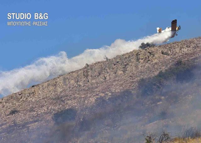 Σε ύφεση οι πυρκαγιές σε όλη τη χώρα - Βρέθηκαν 3 αυτοσχέδιοι εμπρηστικοί μηχανισμοί