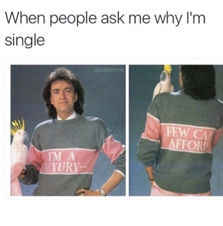 When people ask me why I'm single.