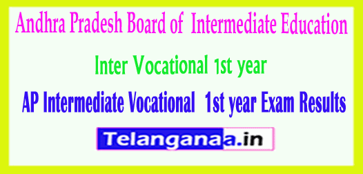 Andhra Pradesh Inter Vocational 1st year Exam Results