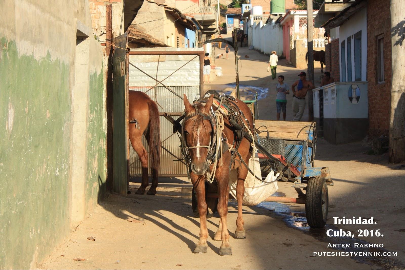 Лошадь и телега в Тринидаде